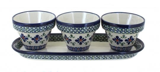 Flower Pots w/ Tray